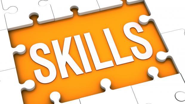 استمارة حصر المهارات الاساسية
