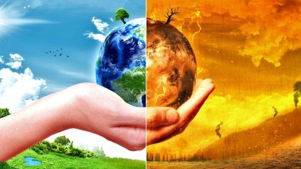 تحضير العلوم درس العلاقات في الأنظمة البيئية الرابع الابتدائي الفصل الاول