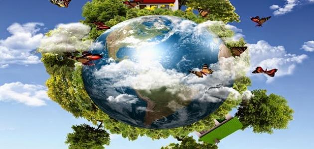 تحضير العلوم درس مقدمة في الأنظمة البيئية الرابع الابتدائي الفصل الاول