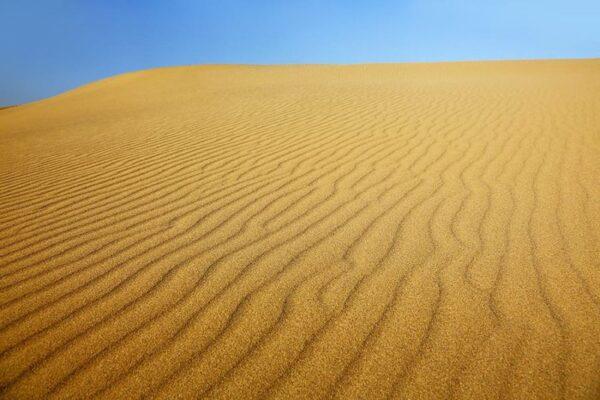 تحضير وحدة الرمل رياض اطفال