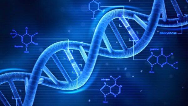 كشف متابعة مواد العلوم الطبيعية نظام مقررات 1440 هـ - 2019 م