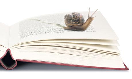 برنامج عملي للقراءة السريعة