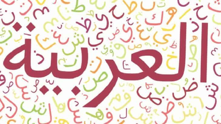 توزيع منهج اللغة العربية 6 الثالث الثانوي