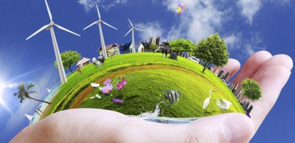 موضوع عن دور القدوة في التعامل مع البيئة