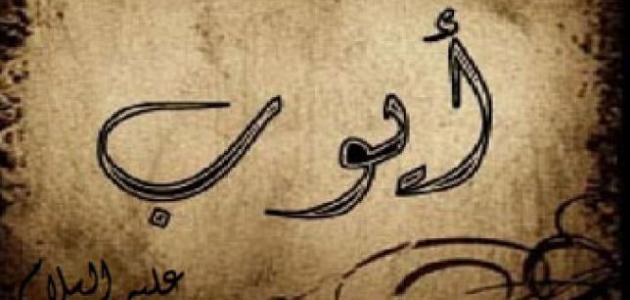 ابحث عن قصة نبي ذكر في القران الكريم