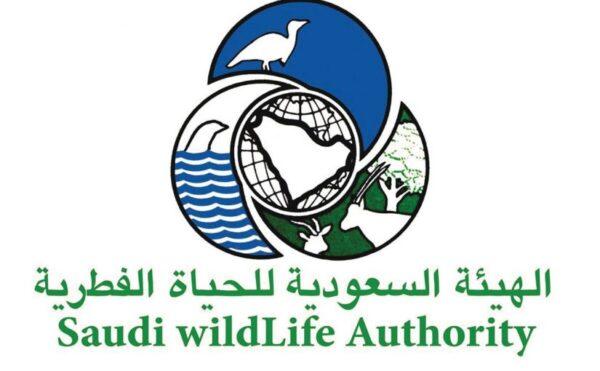 تاريخ نشأة الهيئة السعودية للحياة الفطرية