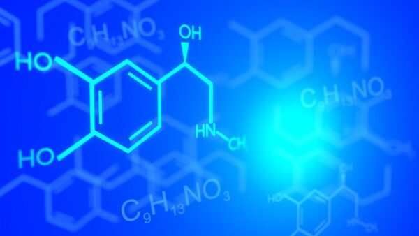 حل دليل التجارب كيمياء 2 مقررات