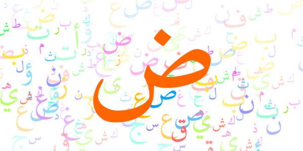 برنامج لغتي المطور للصفوف الاولية 1441 هـ - 2020 م
