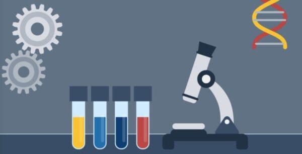 تحضير دروس العلوم موقع عين الخامس الابتدائي الفصل الاول 1441 هـ - 2020 م
