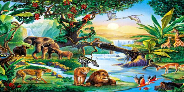 تحضير علوم المخلوقات الحية الصف الثالث الابتدائي الفصل الاول 1441 هـ - 2020 م