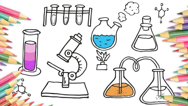 مهارات علوم ثاني ابتدائي الفصل الاول 1441