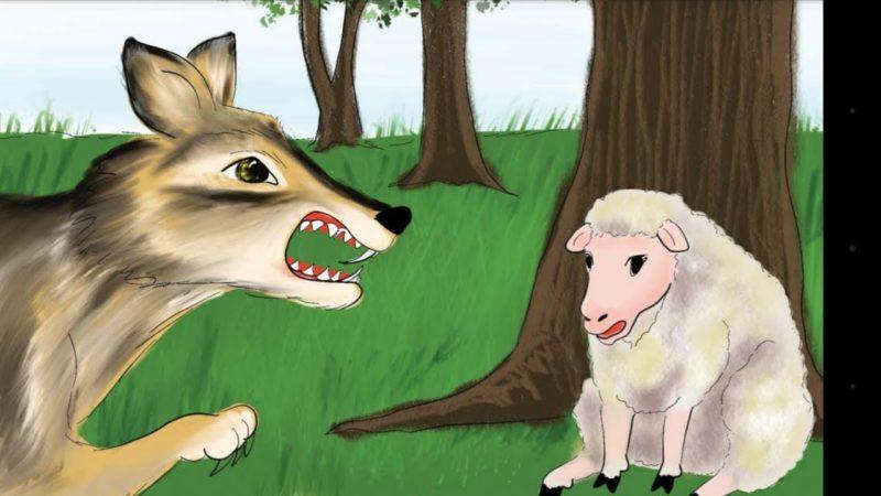 حل التدريبات الخروف و الذئب الصف الاول الفصل الثاني 1441 هـ - 2020 م