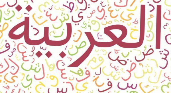 نشاط الاسبوع 14 لغتي الاول الابتدائي الفصل الثاني 1441 هـ - 2020 م