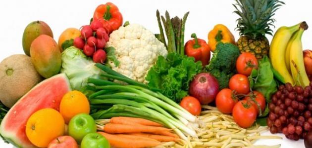 محاضرات فيزيولوجيا التغذية