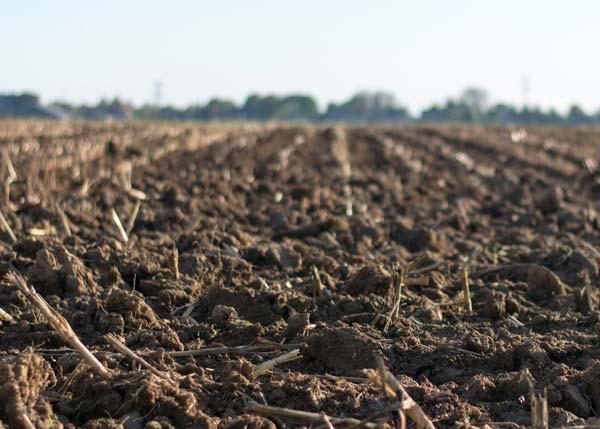 شرح درس التربة الصف الثاني الابتدائي الفصل الثاني 1442 هـ - 2021 م