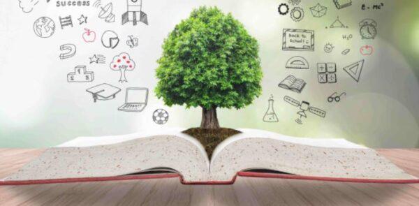 الخطة الاسبوعية مفرغة وقابلة للتعديل للصفوف الابتدائية 1443 هـ - 2022 م