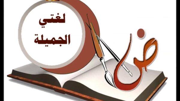 حقيبة مادة لغتي الجميلة الصف الثاني الابتدائي الفصل الاول 1443 هـ - 2022 م