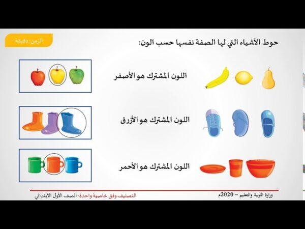 بوربوينت درس اصنف الاشياء وفق خاصية واحدة الصف الاول الابتدائي
