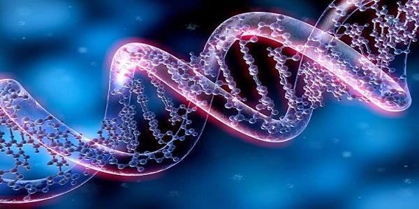 بوربوينت درس الخلايا مادة العلوم الصف الرابع الابتدائي الفصل الاول
